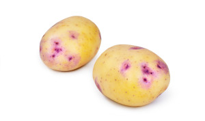 This is a Kestrel Potato. It is excellent for baking and frying.