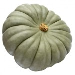 Queensland Blue is just one of the great pumpkin varieties available in Autumn and Winter.