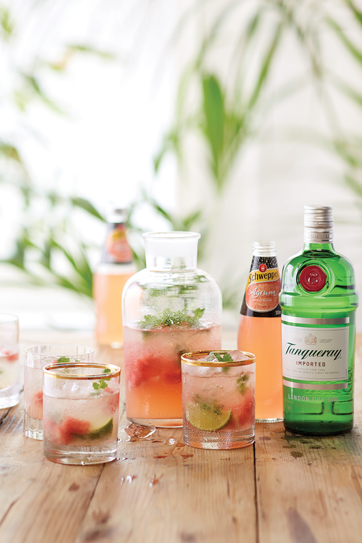 Try this gin cocktail with watermelon, lime and Schweppes Agrum. It's the perfect New Year's Eve celebratory drink!