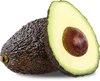 Fresh Hass avocado