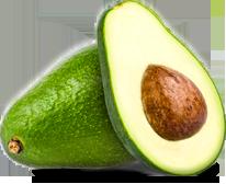 Shepard avocado